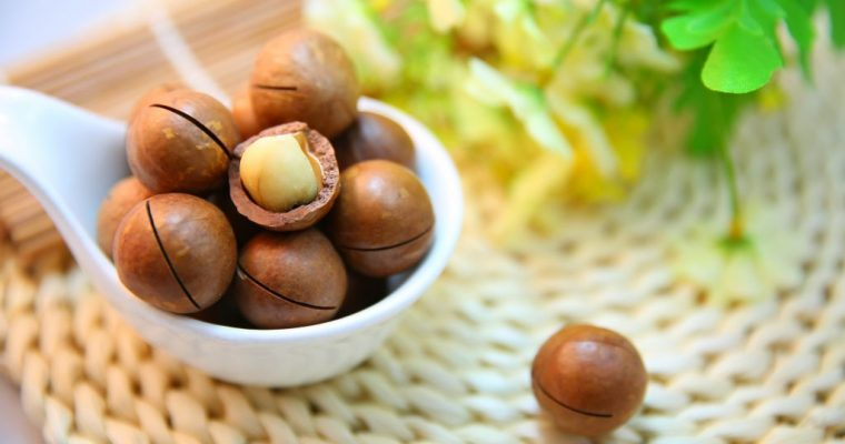 Why we 'Activate' our nuts & Seeds?